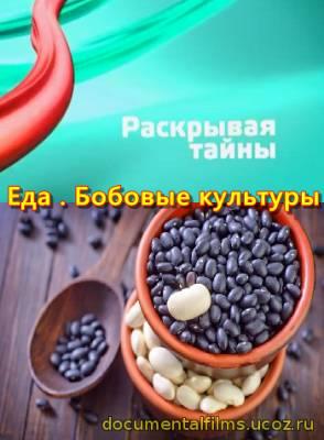 Что можно приготовить из фарша быстро и вкусно диетический