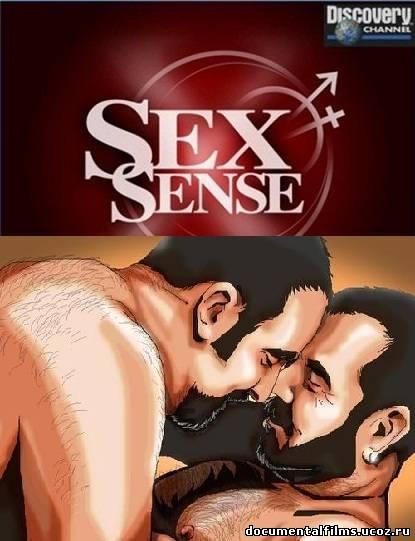Discovery секс гомосексуальность онлайн