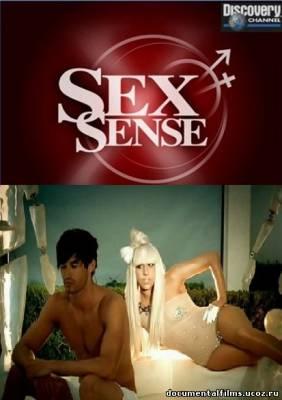 Discovery о сексе оргазм смотреть онлайн